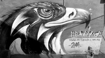 eagle eye.