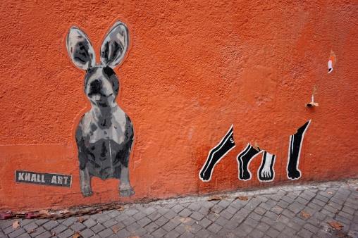 hashund