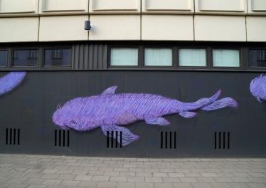 fishy4