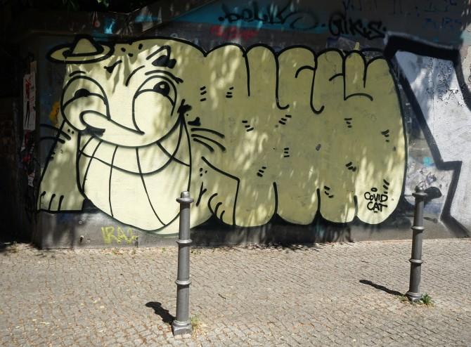 covidcat